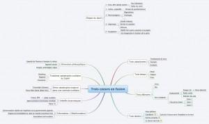 Carte mentale - Mindmap