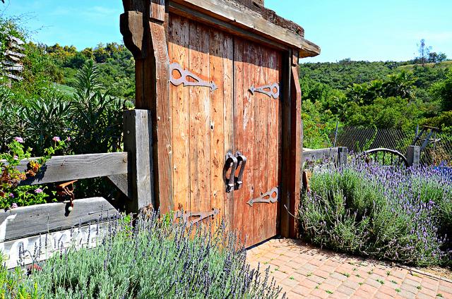 Lavender farm gates